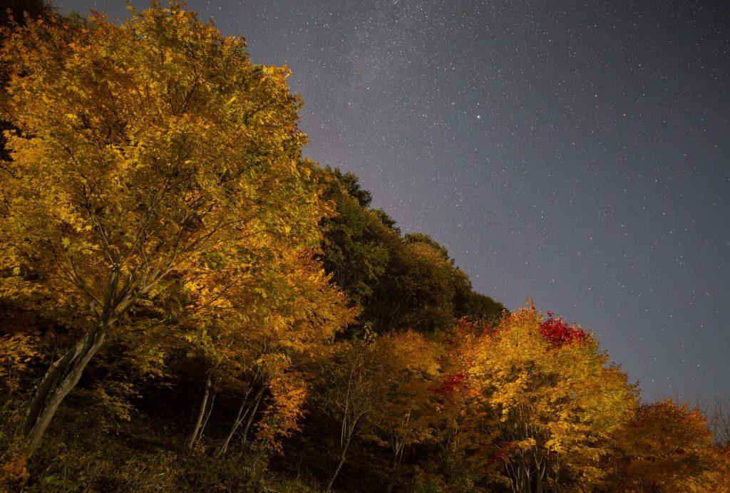 紅葉と星空(スキー場センターハウス横の土手)
